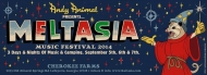 $80 3-day passes to Meltasia Music Festival (reg. $125)